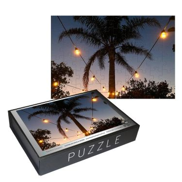 W-PZ-Palm tree and lights